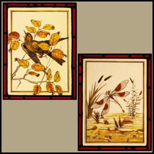 Bird & Dragonfly