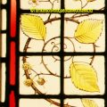 Blackberry Stained Glass
