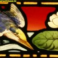 Kingfisher Stained Glass